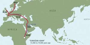 подгруппа М253 миграция